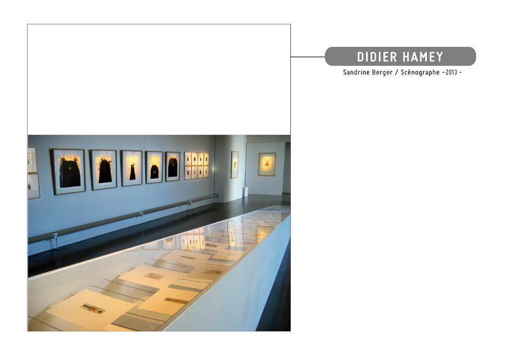 exposition Didier Hamey à Hermeland